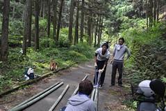 DSC_1072 (uruuruurusu) Tags: house bamboo remake