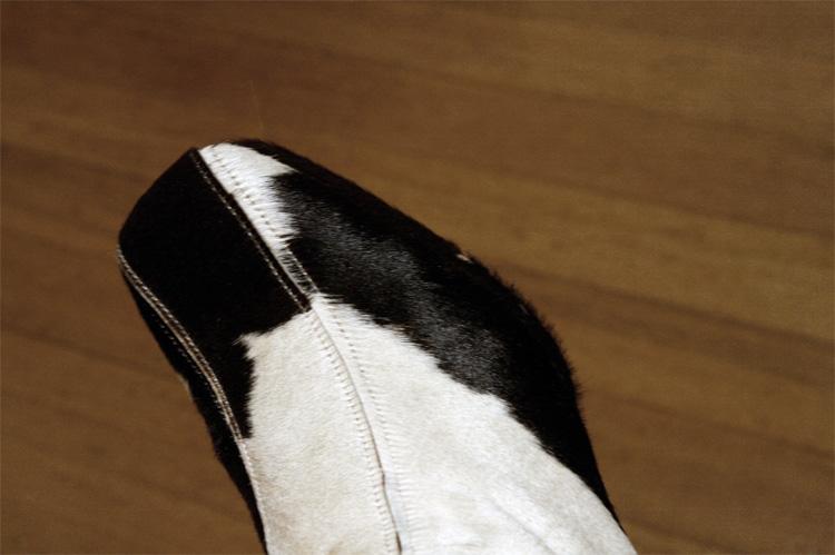 _shoes3
