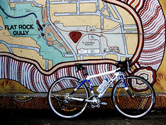 North Sydney to Chatswood Bike Path (West Pymble, New South Wales, Australia) Photo