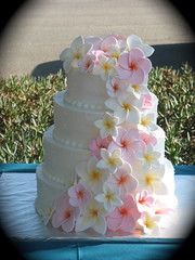 Plumeria wedding cake (two parts sugar) Tags: pink flowers wedding orange white cakes yellow cake hawaiian tropical missionviejo orangecounty cascade plumerias lakeforest fondant foothillranch laderaranch ranchosantamargarita lasflores frangipanis cotodecaza swissdots