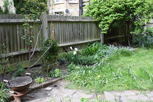 Garden view April 2010