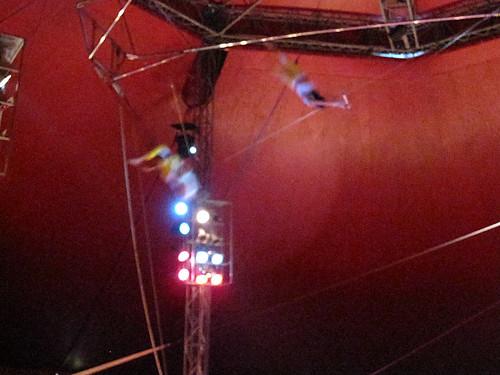 flying trumpeze