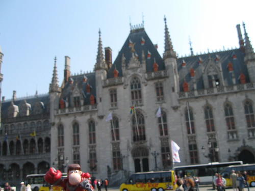 Narizón errante en Brujas, Bélgica