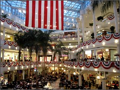 Mall Ball? (Kurlylox1) Tags: president skylight americanflag presidential historic celebration palmtrees balconies redwhiteandblue foodcourt inauguration 44 bunting barackobama pentagoncitymall anawesomeshot theunforgettablepictures