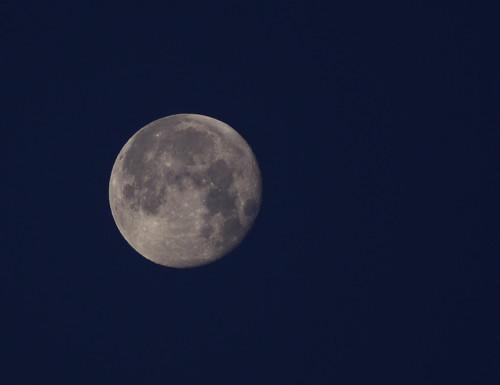 2 Morning Moon*