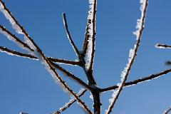 IMG_4347 (majena) Tags: winter snow mountains czechy