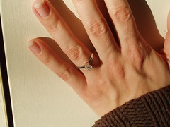 fly on the wall engagement ring