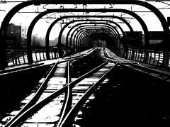 All tracks lead to Rome (Gremxul) Tags: rome roma railway trainstation fiumicino blackwhitephotos