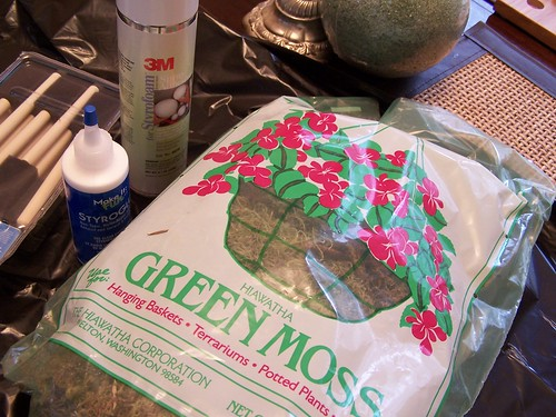 Getting Crafty With Green: <br>Make a Moss Topiary