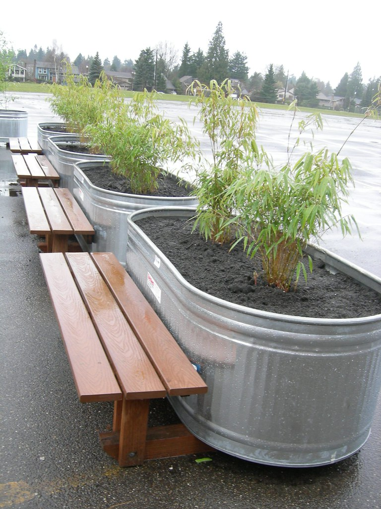 Row of bamboo bench planters