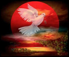 white dove on red moon