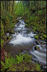 VIENTO CREEK (Cliff Zener) Tags: mt hood creeks zener oregoncreeksandrivers columbiagorgecreeksandrivers riverscliff