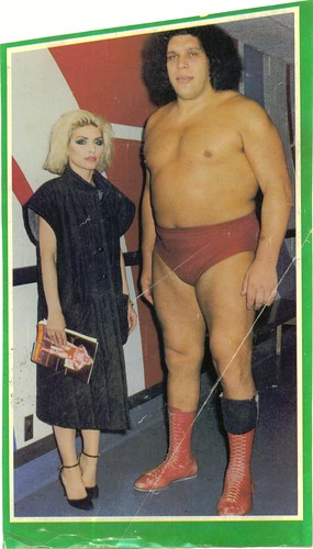 debbie harry meets andre the giant