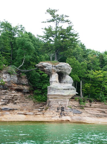 lone tree at pictured rocks