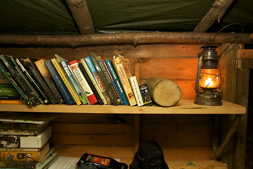 Treehouse Life - the bookshelf