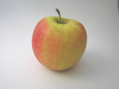 english apple fruit outline