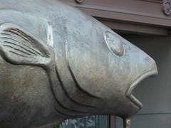 P1050121 (Salomon Salvador) Tags: tourism boston massachusetts beantown