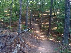 4 - Van Michaels Loop Downhill