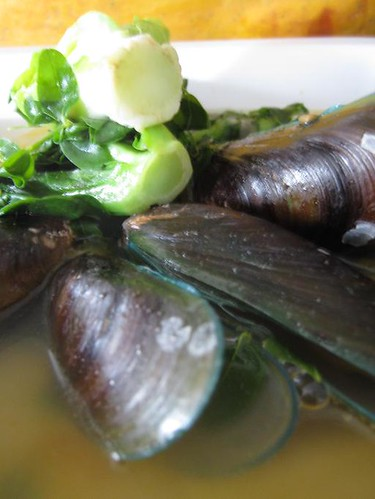how to cook mussels in a soup