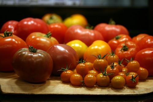 tomato taste test 2