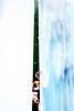 Audience (mauro_massimiliano) Tags: sea portrait people italy abstract rome apple boat mare peace fiat duo lsd nave journey drugs marco messina vacanze ciccio giovanni milazzo cinquecento cco massimiliano capodorlando terronia massimilianomauro sicuolonia