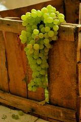 ● Just a little to freedom...! (»✖BeHiNaZ✖«) Tags: دیگ،تقطیر،انگور،پس،کو behnazhatami behnaz hatami behinaz نیمابیادبمگهمامثشماییم؟ انگور بهیناز بهنازحاتمی سیدهبهنازحاتمی سبز بهسویآزادی؟ green جعبهانگور شراب،ناب،شیراز specialthankstodearsamanforguesswhat نخیرشمپررو خوشه،انگور،تو،دستم خوشه،چین خوشهانگور تایتلدارمانتخابمیکنمدی شعر،از،نیما،شریف نستعلیق برگ بچه،شهری freedom ، justalittle خس،و،خاشاک بچهعمهتهنیما ماخسوخاشاکیمدی رایمنکو؟ البتهمنرایندادمخودممیدونملازمنیسیادآورشیندیپی اتفاقامنرنگاینعکسمودوسدارمخیلی حسمیدهبهم فقطیکمتاآزادی خستهنشوبرو grape دخترک،انگور،فروش هنگ،کرده ایرانسبز یه،زره،دیگه،تورو،خداااااا پنجره،ای،به،سوی،خانه،ی،پدری بهناز،هست من،هستم اونا،هستن دشمن،خستست من،دیگه،رفتم ،روح،آقا،خامنه،ای با،تشکر،از،خودم کمک،کن،دیگه داشتمواسهگروهامیفرستادم سلف پرتره selfportraitd واقعانمرهعکسم710؟؟خودمخیلیبیشترمیدونمش nikon d90 ببخشيدخانوممتشخصاينجاشلهمشهدينميدن؟؟؟d اگهشلهميدنمامبيايمبگيريمd نخیربفرمایید2کوچهبالاتردی خبويوانبلاكشمببينيدديگهd بلهبلهببینیددی رفتمدوكوچهبالاترگفتنشلهنميدنd ااااخبدخترهالآنهمهروزهنبایدنزدیکایافطاربری چهآهنگخوشگلیگذاشتهحسگرفتم عهراسميگيتاثيراتروزستd كدوماهنگ؟ nafahmidamesmeshchibudalantvpersiaonegozashtebuddkheylikhoshgelbudaaaaaa راستيچراروكانالاپرازيتانداختنمنفارسيوانميخوامd مگهفارسیواننمیگیرهواست؟او نهسهچهارشبهسامسوننديدم جدی؟ دونقطهپزدی d