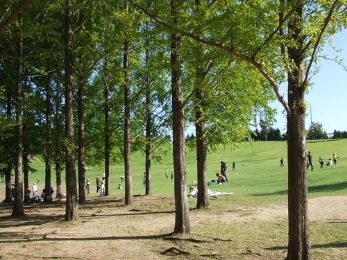 国営 備北丘陵公園 画像