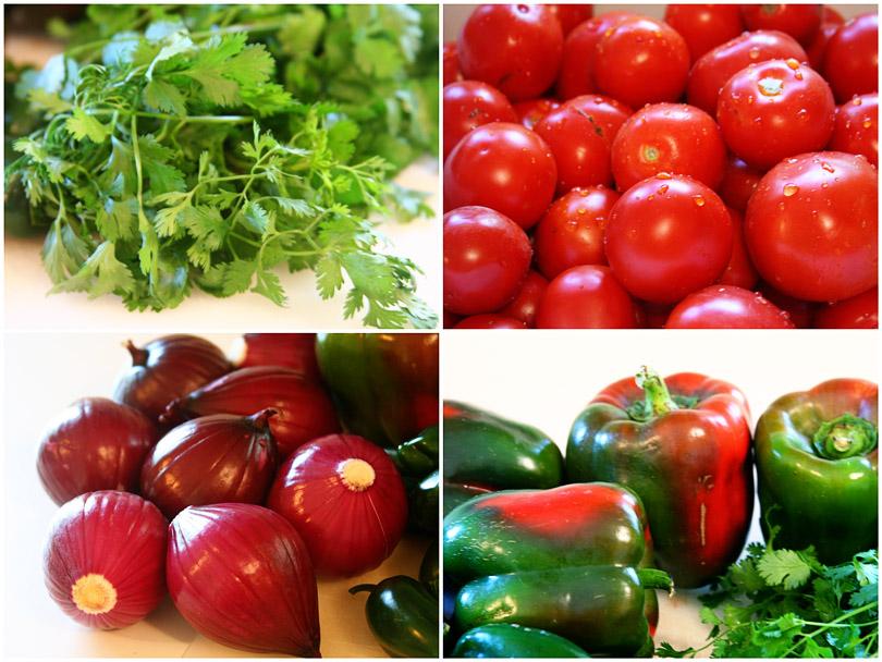 Salsa Veggies 2