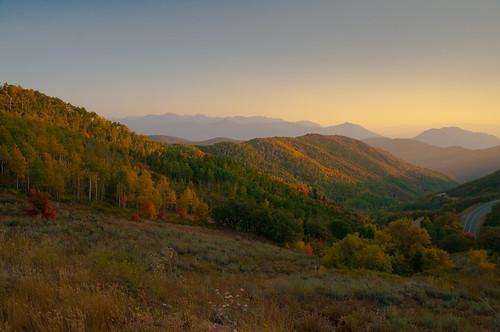 Fall Leaves at Dusk (Salt Lake City, Utah)