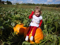 Lilliann Sitting On A Giant Pumpkin