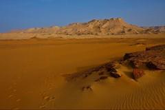 (676) In The Morning (avalon20_(mac)) Tags: africa travel sahara nature geotagged sand desert egypt 500 misr eos40d schulzaktivreisen