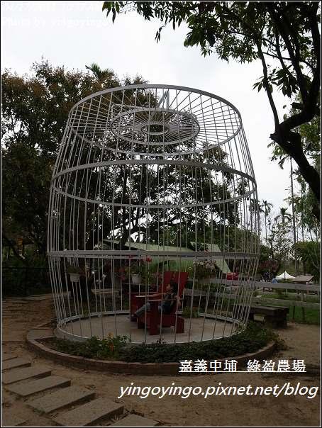 嘉義中埔_綠盈農場20110417_R0019014