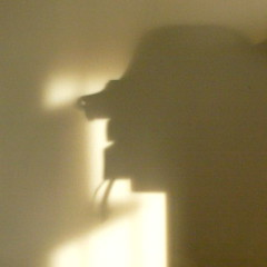 Strange shadows on the wall - 1