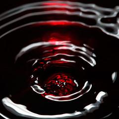 (vagabondando) Tags: red macro wine bordeaux vertigo acqua rosso liquid sangue vino prosit gorgo liquido vertigine cincin sundaybloodysunday haveadrink bicchiereikea vogliofucchiareiltuofangue