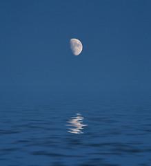 Pacific Ocean Moon