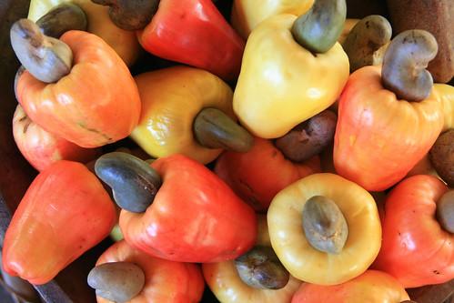 Maranhão food fruits cashew orange favorites Atins