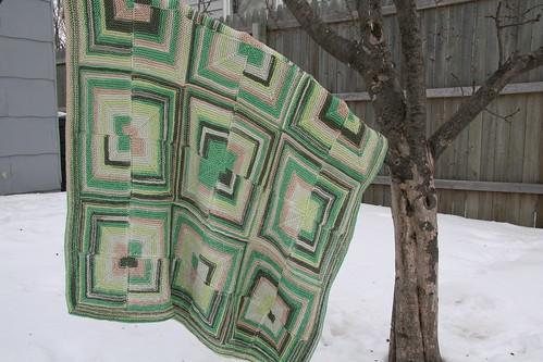blanket tree
