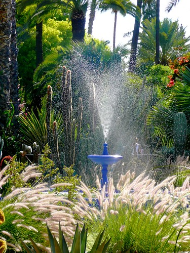 حدائق من المغرب تصوييري