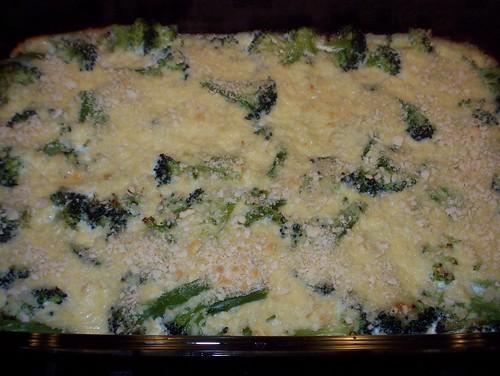 broccoli parmesan gratin