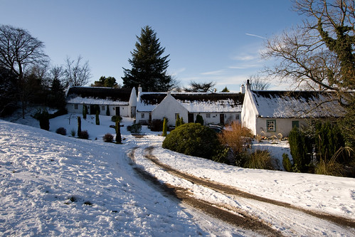 Swanston, cottages in the snow (8601)