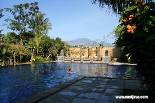 Ijen View Resort - Situbondo - East Java