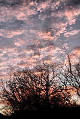Reach for the Color (Jeff Clow) Tags: morning dawn dfw texas nature sky