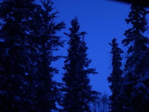 Boreal-Blue.jpg