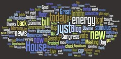 Congressional Tweet Word Cloud (research in pr...