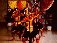 Bali Dancers / Balinese Dance - Warriors (Dominic's pics) Tags: bali orange yellow indonesia gold golden dance costume dancers traditional culture slide scan event filter transparency 1998 warriors noise hindu performer dharma canoscan balinese agama seriousexpression reducenoise balinesedance 8800f agamahindudharma