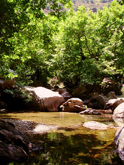 Pink Yellow and Green (egotoagrimi) Tags: trekking river ikaria aegean planetrees platanusorientalis  rivertrekking livada agrimi