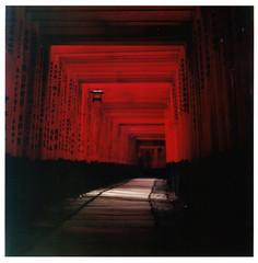 :: passage II (:snyx:) Tags: light shadow red 6x6 japan analog shrine colours   vi flexaret fushimiinaritaisha  snyx krakoff