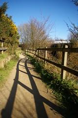 Wavy shadow (Sue Langford) Tags: shadow sunshine fence path gorse transpenninetrail m60 rivermersey pentaxk100dsuper