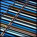 Midtown stripes par daruma*