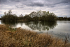 England: Northamptonshire, Lake Island (Tim Blessed) Tags: uk trees sky nature water reeds islands landscapes scenery lakes wetlands ponds singlerawtonemapped